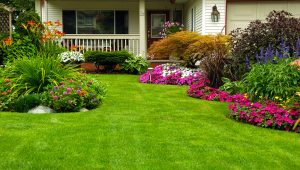 Beautiful Residential Garden